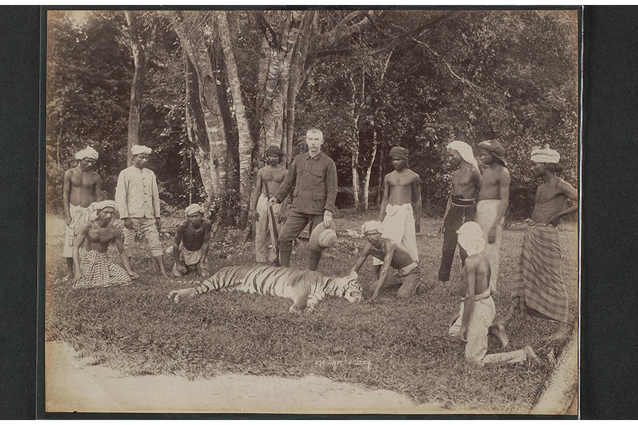photograph-of-tiger-hunt
